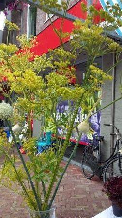 bloemen markt 2