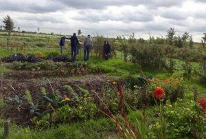 duurzaam Bodegraven Reeuwijk